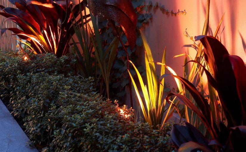 Garden Design for Evening Enjoyment   Sydney