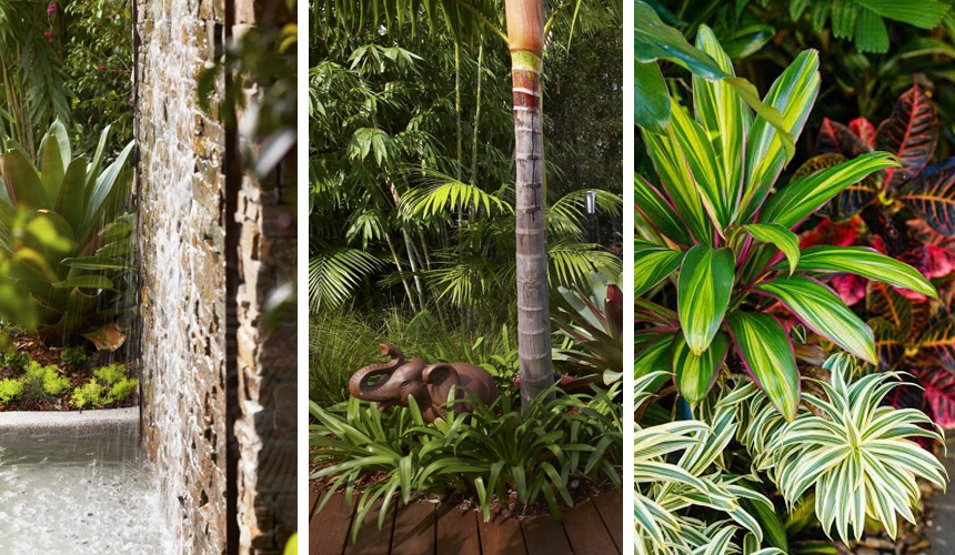 Tropical Garden Landscaping Sydney