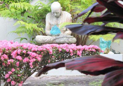 meditiation-landscape-designer-sydney-4